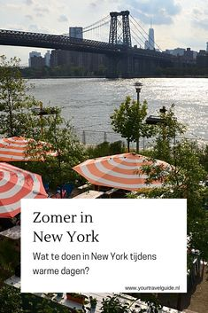 Wat te doen in New York op warme dagen? - Your Travel Guide New York Travel Guide, Stuff To Do, Things To Do, Usa Cities, Coney Island, Ultimate Travel, Solo Travel, Brooklyn Bridge, North America