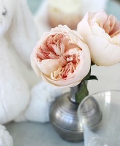 Beautiful Peach Garden Roses for the Bridal Bouquet