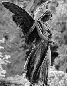 Angel, Estatua, Figura, Cementerio, Piedra, Escultura
