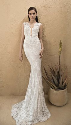 Michal Medina bridal collection. Lace weddingdress, figure hugging gorgeousness  https://twitter.com/michal_medina