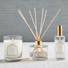 Naturalist Homescent Collection - Woods | west elm