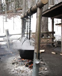 Rustic Evaporator for maple syrup