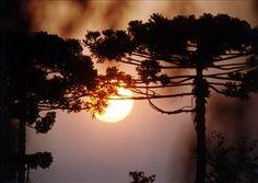 Por do sol. Curitiba Foto: Nani Gois/Arquivo
