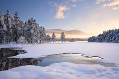 And Then There Was Light - Loch An Eilean, Cairngorm, Scotland