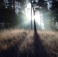 Perfect light By Konsta Punkka