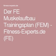 Der FE Muskelaufbau Trainingsplan (FEM) - Fitness-Experts.de (FE)