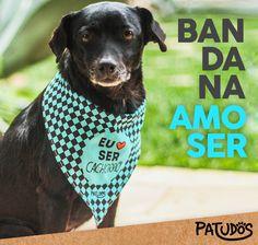 Para cães de atitude! E estilo! #patudos #mundopatudos #cachorro #dog #pet #petlovers #petshop