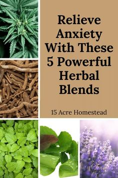 Learn how to use 5 powerful herb blends to relieve anxiety for you and maybe even your family. Herbal Remedies, Home Remedies, Natural Remedies, Herbs For Health, Health And Wellness, Mental Health, Natural Medicine, Herbal Medicine, Dry Plants
