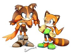 Sticks the badger and marine the raccoon Sonic Mania, Sonic 3, Sonic Fan Art, Sonic The Hedgehog, Hedgehog Art, Mundo Dos Games, Sonic Franchise, Eggman, Sonic Heroes