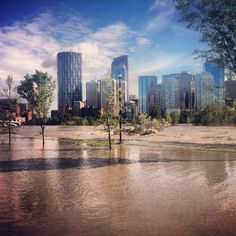 The City of Calgary in Alberta. Thinking of moving here one day.