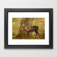 Stag Party, Autumn Shade - by Linsey Williams  #stagparty #uniquewallart #gifts @lin_dies