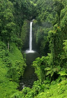 The Kingdom of Tonga - Waterfall in southern Upolu - this is a South Pacific Island and the last place over seas that I would love to visit. Tonga Island, Beautiful Waterfalls, Beautiful World, Beautiful Islands, Beautiful Places, Amazing Places, Places To Travel, Places To Visit, Travel Destinations
