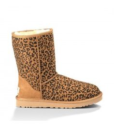 82e761404809f2 543 Best Women UGG Boots images