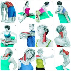 Stretching is an essential component of both exercise and health. these 36 pictures help you See Which Muscle You Are Stretching