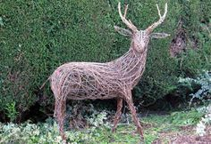 Life-size willow stag/deer, can't use these antlers in my antler basketry, but would look great in my front yard!
