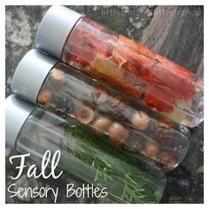This season, get outside and explore nature! Bring some home and turn your natural items in beautiful Fall sensory bottles. simple science for young kids!
