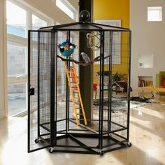 For the ultimate in bird cages, select the Cages By Design 5 ft. Diameter Indoor Aviary for your home. With 72 inches of interior height, your feathered. Cat Cages, Bird Cages, Cat Brain, Bird House Kits, Bird Aviary, Parrot Toys, Cat Condo, Tropical Birds, Bird Houses