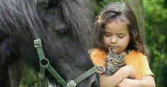 http://ift.tt/2mCK0nZ Just Pinned to Animals: http://ift.tt/2puqJab