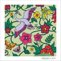 Colorfly pics