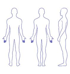 Naked standing man vector 659525 - by arlatis on VectorStock®