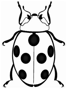 Lady bug coloring page