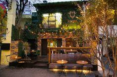 Bar e restaurante simula uma floresta em plena São Paulo