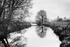 Mooie #reflecties in het gladde water in de kop van #Overijssel