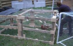 Picture of Turn Old Pallets Into A Chicken Tractor!
