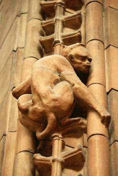 Natural History Museum, London ~ architect Alfred Waterhouse. Detail of fabulous tile stonework of this Victorian Romanesque building. #art #architecture