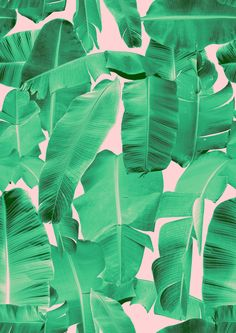 pattern | banana leaf print by rhianna ellington