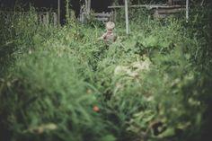 the field white crow farm-16 / Syd Woodward /  Magic Garden <3