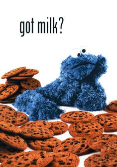 COOKIE MONSTER How did I forget I own this? Hmm, maybe framing pictures of cookies in my future child's room is not the best idea though...