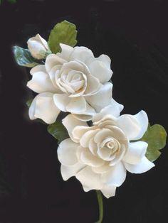 Gardenia language of flowers means secret love a fragrant gardenias 3 mightylinksfo