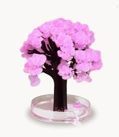 Invenções Interessantes: Magic Sakura Home Cherry Blossom