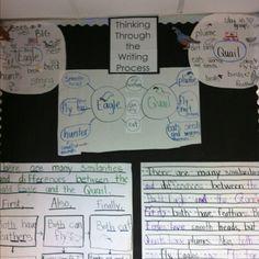 Thinking maps in kindergarten.