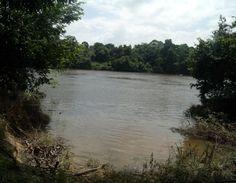 Kaaimanston - Suriname river