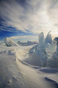 Artic Sculpture