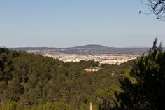 Coll de sa Creu overlooking Palma, Majorca