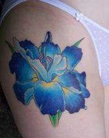 Blue Iris Tattoo tattoo pictures of iris