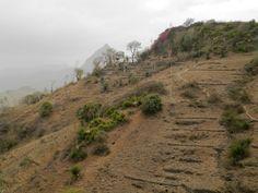 Arrivée vers un petit col avant de redescendre vers Boa Entrada. Santiago - Cap Vert