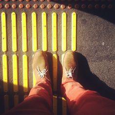 Clarks | Desert Boots | Sun