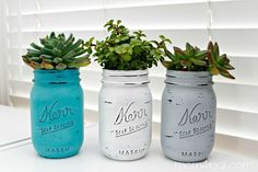Mason Jar Succulents Planters - paint jars - put pebbles/small rocks in bottom - finish with cacti soil & succulents