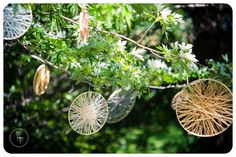 Yarn wrapped embroidery hoops in the trees over outdoor ceremony space- outdoor wedding decor