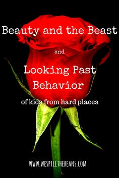 Beauty and the Beast and Looking Past Behavior