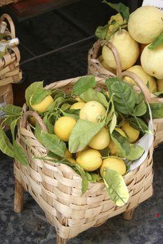 Lemons on the Amalfi Coast... we're visiting Sorrento and maybe Capri!