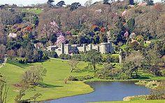 Caerhays Castle & Gardens, near Mevagissey, Cornwall