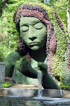 Plante Visage 28 sculptures végétales impressionnantes de la plus grande exposition mondiale
