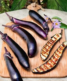 Ichiban Japanese Eggplant- we added these to our little garden today; a new plant for us!!!