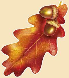 Watercolor Fox Tattoos, Watercolor Art, Autumn Painting, Autumn Art, Enchanted Forest Coloring Book, Edible Printing, Pumpkin Cards, Batik Art, Fall Pictures