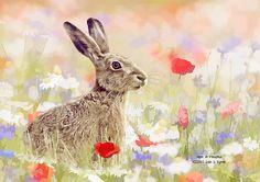 Hare in Meadow #animalprint by Iain S Byrne